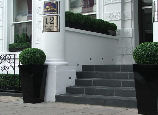 What Did Customers Say about Uland Boxwood Topiary